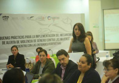 Alerta de Violencia de Género requiere coordinación efectiva: Teresita Zuccolotto